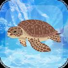 ウミガメ育成ゲーム かわいい癒しのアプリ