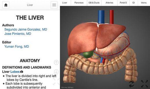 Screenshots - 4D Medical