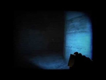 Video Image - A-2481