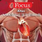 Anatomy Atlas - Chinese