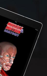 Screenshots - Anatomy by Muscle & Motion