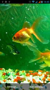 Screenshots - Aquarium Live Wallpaper