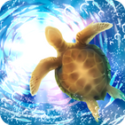Aquarium Sea Turtle simulation