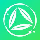 Bambú 🍃 Meditación guiada y sonidos para dormir