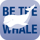 Be the Whale Beluga