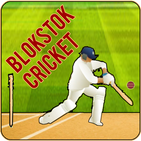 Blokstok Cricket