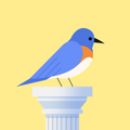 Bouncy Bird: Casual & Relaxing Flappy Style Game APK