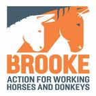 BrookeCheck
