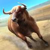 Bullfighting 3D