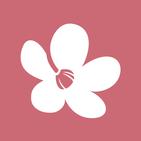 Chula - Makeup Store: Cosmetics, Skincare & more.