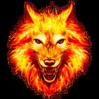 Coyote Ringtones