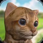 Cute virtual pet kitten - Free cat Family game