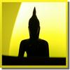 Daily Gautama Buddha Quotes - quotes of wisdom