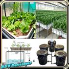 Diy hydroponics system plans