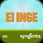 El Inge Syngenta