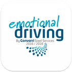 Emotional Driving The Book