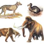 Extinct animals, endangered species! Rare animals