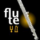 Flute Tuner & Metronome