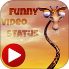 Funny Video Status : Funny Videos For Tik Tok