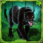 Furious Panther Family Sim