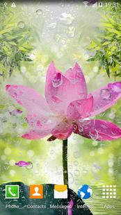 Screenshots - Garden Zen Live Wallpaper