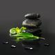 Garden Zen Live Wallpaper