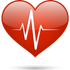 Heart Rate Monitor - Check Your Heart Rate
