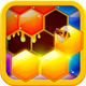 Hexa Hive Puzzle : hexagon block game