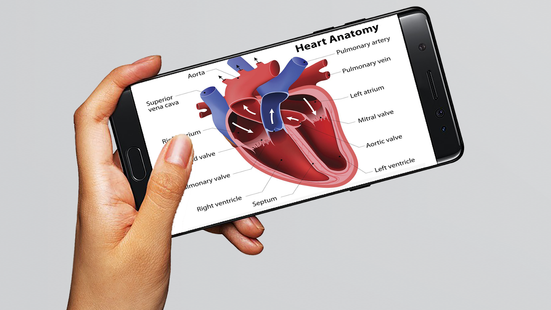Screenshots - Human anatomy 3D : Organs and Bones