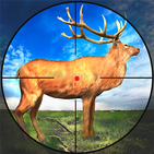 Hunting Games 2021 : Wild Deer Hunting