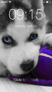 Screenshots - Husky Puppy HD Free PIN Lock