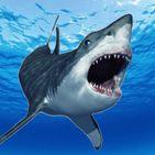 Mad Shark Attack Survival Horror