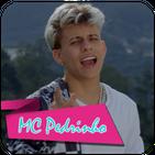 MC Pedrinho feat DJ Kalfani - Fruto Proibido
