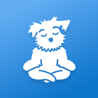 Meditation for Sleep and Calm | Down Dog