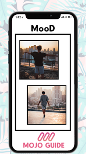 Screenshots - mojo - Create animated Stories for Instagram Guide