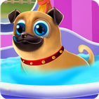 My little Pug - Care and Play