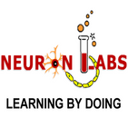 Neuron Labs