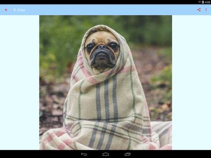 Screenshots - Period Remedy - Advice, Tips & Hacks