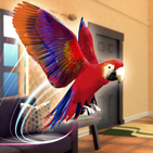 Pet Vet Parrot Simulator: Bird Games