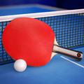 Ping Pong Fury APK