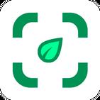 Plants identifier -plant identification by picture