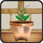 Plants Shop : App of growing and harvesting plants