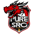PureSRO - Private SRO Server