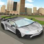 Race Car Driving Simulator