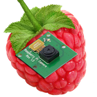 RaspberryPi Camera Viewer