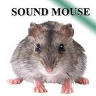 Rat mice