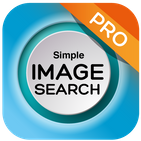 search by image on web (reverse image search)