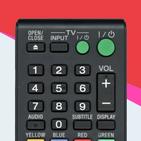 Sony Smart TV Remote Control