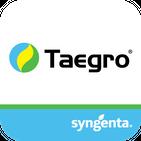 Syngenta TAEGRO AR