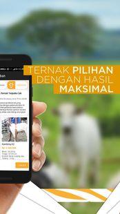 Screenshots - TERNAKNESIA - Investasi dan Jual Produk Peternakan